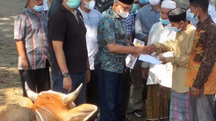 Bupati Bireuen Antar Lembu Kurban ke Desa Berpenduduk Miskin