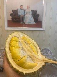 Peringati Ulang Tahun ke-61, Darwati Hadiahi Irwandi Durian Musangking Lhong