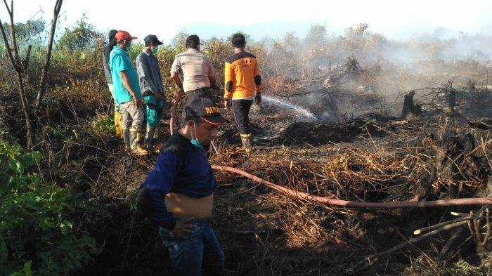 Di Aceh Utara belum Ada Perkebunan Sawit Bersertifikat, Ini Jawaban Pemkab