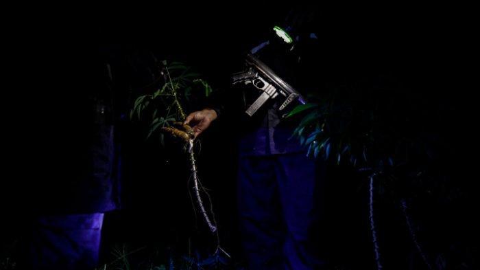 FOTO - Menghalau Kawanan Gajah Liar Yang Masuk ke Kebun Warga Pada Malam Hari - petugas-dari-eru-elephant-response-unit-2.jpg