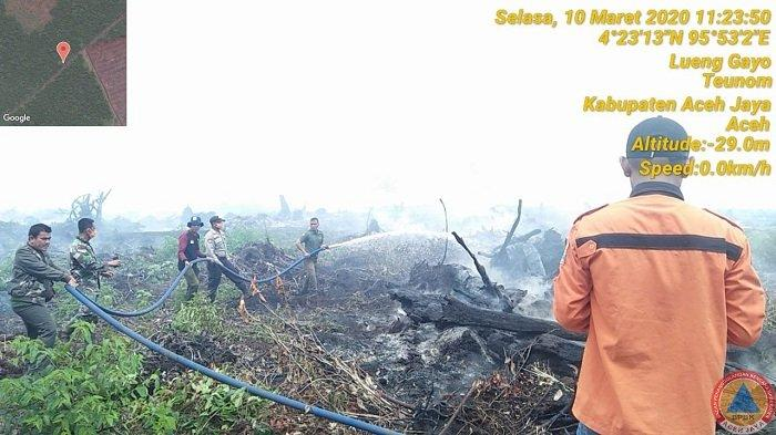 Lahan Gambut di Aceh Jaya Terbakar, Pemadaman Terkendala Akses Jalan
