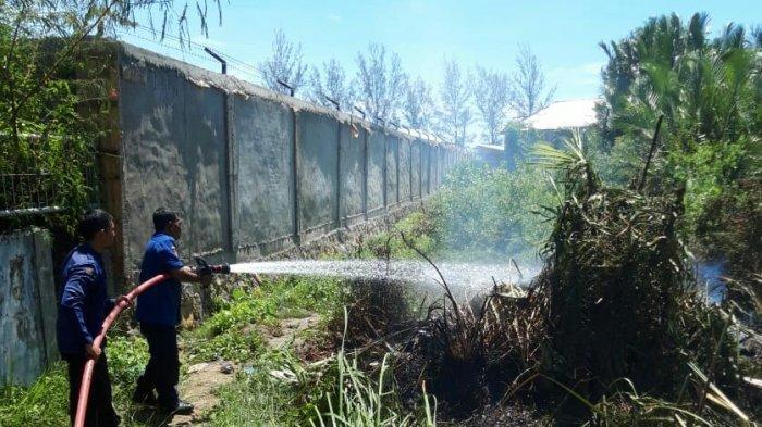 Tiga Lokasi Ilalang di Banda Aceh Terbakar, Pemicunya Terungkap