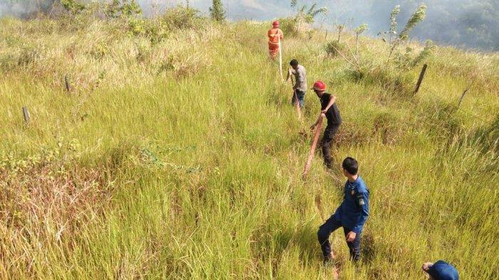 Diguyur Hujan, 8 Hektare Kawasan Hutan Lindung Seulawah yang Terbakar Sudah Padam