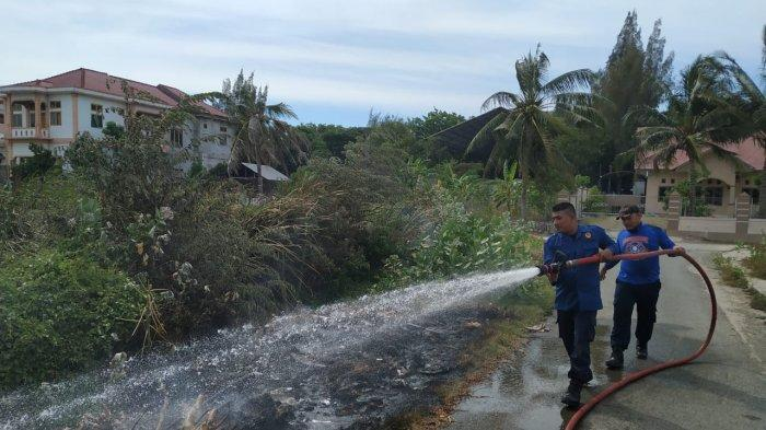Ilalang di Belakang Kantor PLN Wilayah Aceh Terbakar, Diduga Ada yang Bakar Sampah