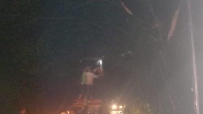 Jalan Lintas Medan - Banda Aceh Lumpuh Empat Jam, Akibat Pohon Tumbang di Seumadam