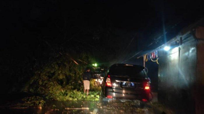 Hujan Deras Tumbangkan Pohon di Seumadam, Jalur Aceh Tamiang – Medan Tersendat