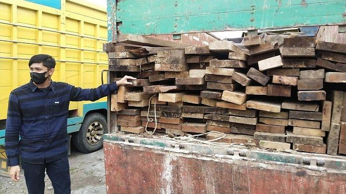 Polisi Amankan Dua Perambah Hutan, Bersama 115 Batang Kayu Olahan