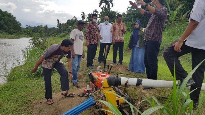 Tanaman Padi Kekeringan di Aceh Besar Terus Bertambah, Distanbun dan BPTPHP Aceh Pinjamkan Pompa Air