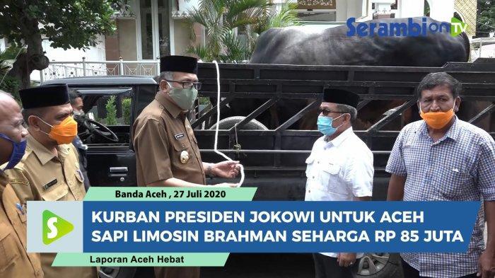 Presiden Sumbang Sapi Kurban untuk Aceh