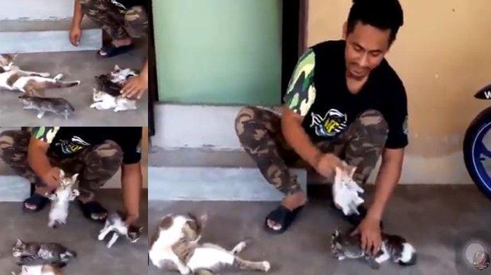 Pria Ini Perlihatkan Trik 'Hipnotis' Kucing Agar Tidur dan Bangun, Ada Netizen yang Sukses Meniru