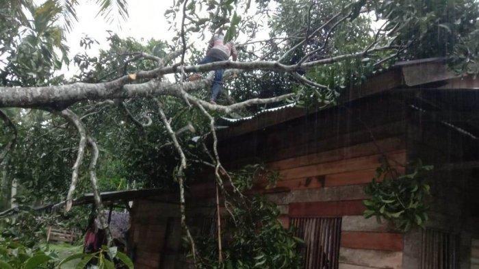 BREAKING NEWS - Puting Beliung Terjang Sejumlah Rumah di Aceh Utara