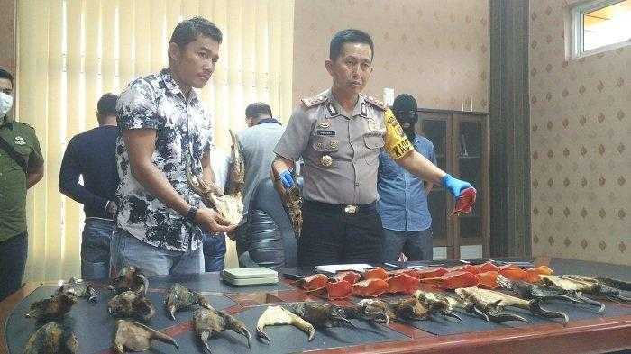 Hendak Menjual Kepala Kijang dan Paruh Burung Senilai Seratusan Juta Rupiah, Empat Warga Ditangkap
