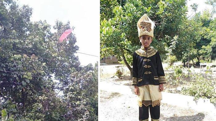 Layang-layang Membawa Petaka, Remaja Peusangan Tersengat Listrik dan Meninggal di Atas Pohon