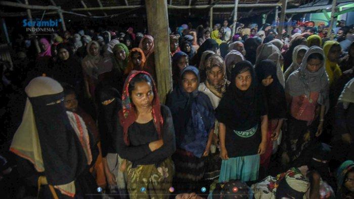 IPAC dari Jakarta Teliti Pengungsi Rohingya di Lhokseumawe, Begini Hasilnya