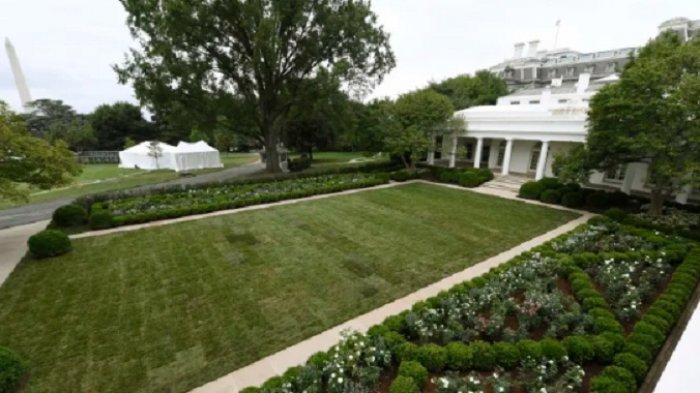 Melania Trump dan Jill Biden Bertarung Memperebutkan Desain Rose Garden Gedung Putih