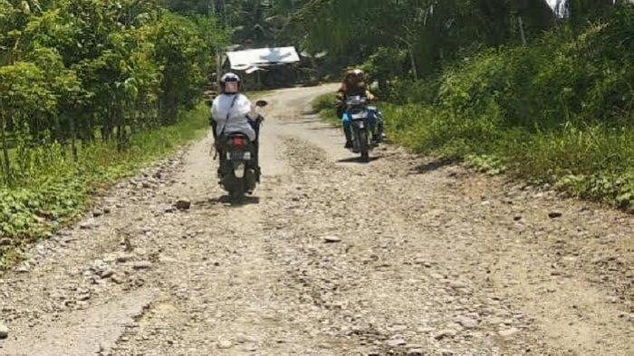 Jalan Kecamatan Makmur Bireuen Rusak Berat, Warga Berharap Segera Diperbaiki