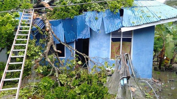 Bantu Korban Dua Rumah Ditimpa Pohon, Pemkab Nagan Raya Bawa Bantuan Masa Panik dan Material Rumah