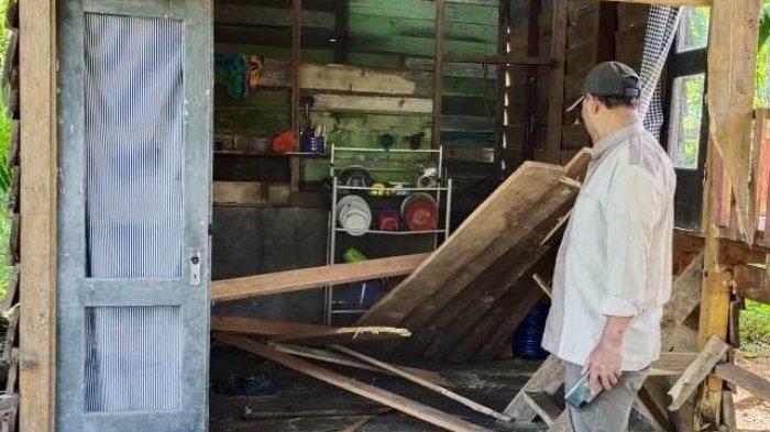 Aksi Gajah Liar di Bener Meriah, Rusak Rumah serta Pohon Pinang hingga Tumbangkan Tiang Listrik