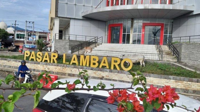 Satpol PP Aceh Besar Tata Lapak Pedagang Buah Kawasan Pasar Lambaro, Warga Berterima Kasih