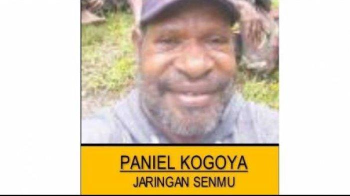 Paniel Kogoya Ditangkap, Habiskan Dana Lebih dari Rp1 Miliar untuk Pasokan Senjata KKB Papua