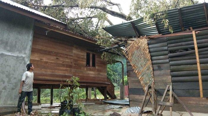 Langsa Dilanda Hujan Disertai Angin Kencang, Dua Rumah Rusak Tertimpa Pohon