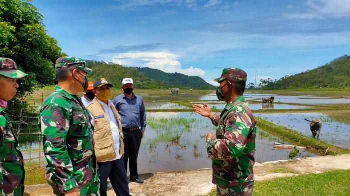 Aceh Besar Akan Galakkan Tanaman Padi di Pulo Aceh, Ini tujuannya