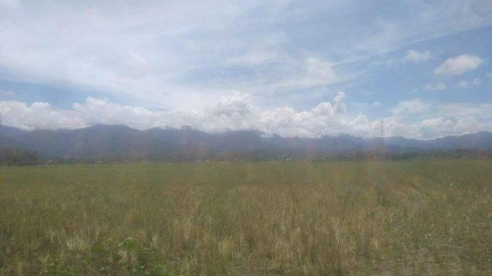 Belasan Hektare Sawah di Lembah Sabil Abdya Terancam Gagal Tanam, Ini Masalahnya
