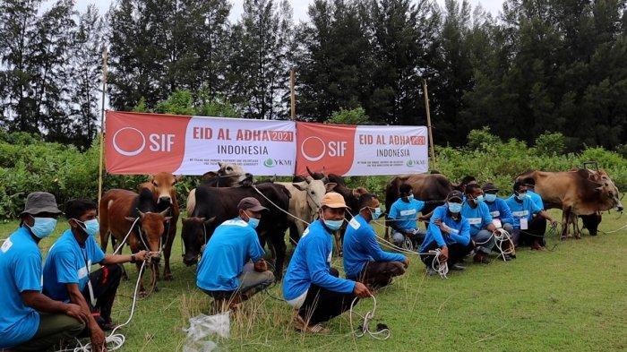 Secours Islamique France dan YKMI Salurkan 4.500  Paket Kurban di Aceh