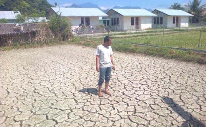 Musim Kemarau, Sejumlah Desa di Tiga Kecamatan di Aceh Jaya Alami Kekeringan