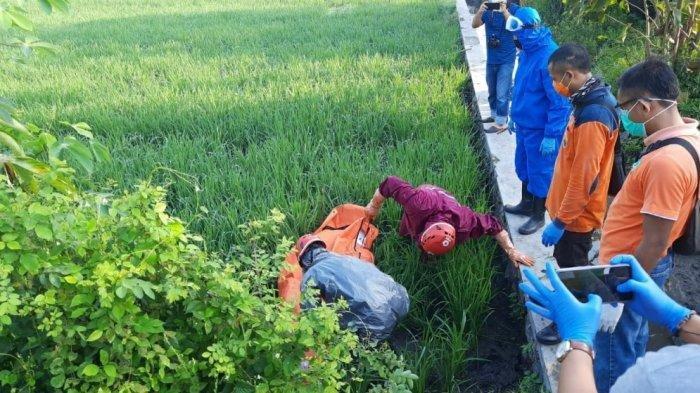 seorang-petani-ditemukan-meninggal-dunia-di-area-persawahannya.jpg