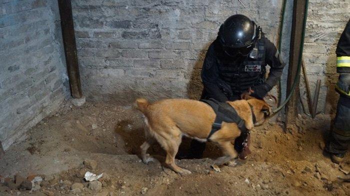 SADIS Tukang Daging Jadi Tersangka Pembunuhan, 3.787 Tulang Manusia Ditemukan di Rumahnya