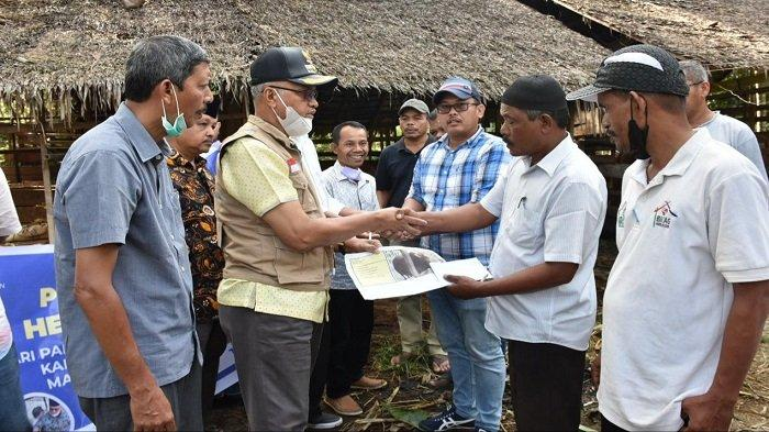 Bupati Bireuen Serahkan 32 Hewan Kurban ke Sejumlah Gampong