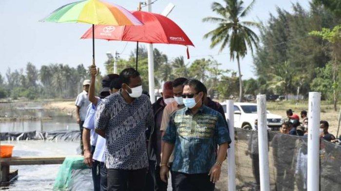 Tim KKP Survei Tambak di Aceh Timur yang akan Dijadikan Tempat Produksi Udang Vaname Terintegrasi