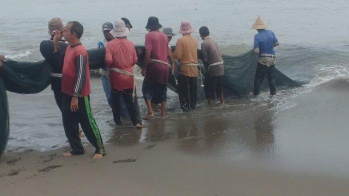 Para nelayan di Ujong Blang, Kuala Bireuen, Minggu (5/9/2021) sedang menarik pukat darat.
