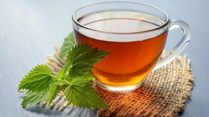 Minum Teh Ini untuk Turunkan Berat Badan, Ampuh Membakar Lemak Perut, Lengkap dengan Cara Membuatnya