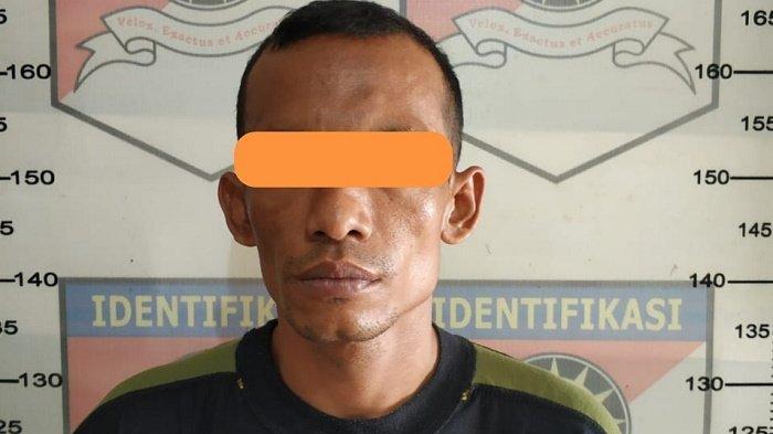 Ketagihan Mencuri Kambing di Aceh Tamiang, Udin Ditangkap untuk Keempat Kalinya