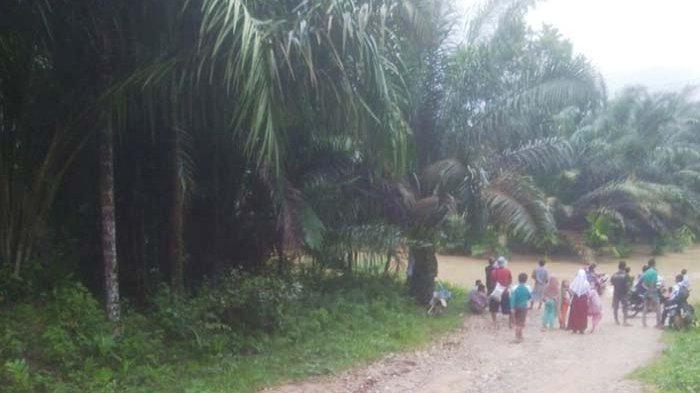 Akses ke Sekolah Tergenang Banjir, Murid Tamiang Hulu Belajar di Rumah