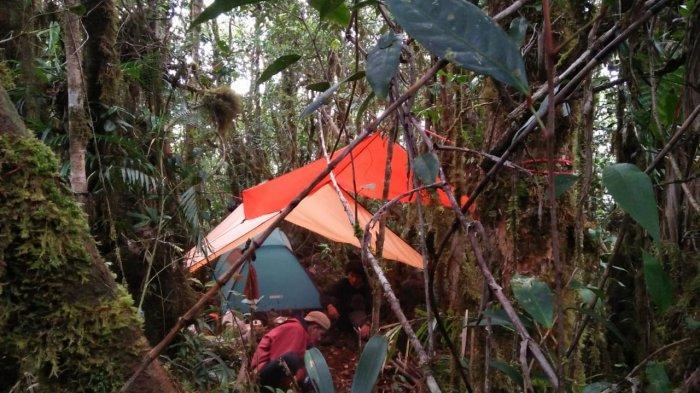Ekspedisi Aceh Tracker Gagal Capai Puncak Abong-abong, Tim Hanya Mampu Daki 3 Puncak Gunung