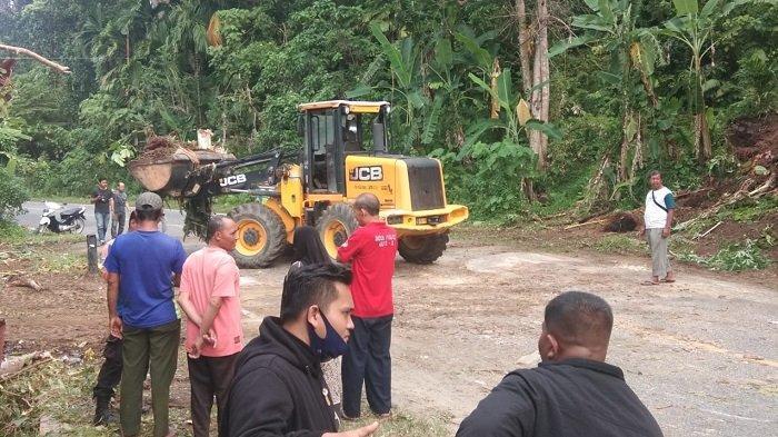 Pohon Tumbang Tutup Jalan Lintas Tapaktuan-Banda Aceh, Satu Warung Rusak