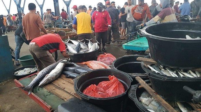 Tangkapan Nelayan Menurun, Harga Ikan Semakin Mahal