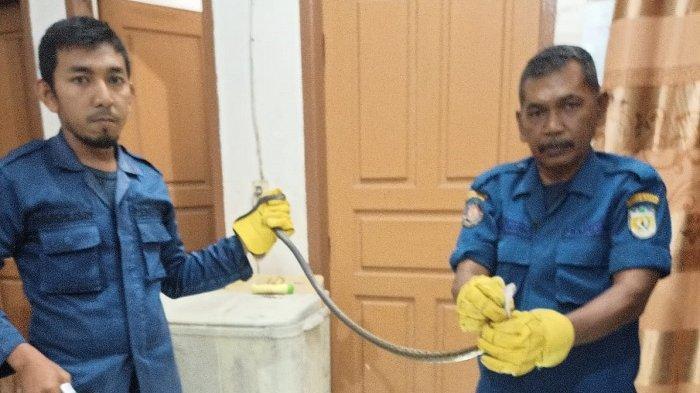 Ular Masuk WC Rumah Warga Emperom Banda Aceh, Tim Rescue Damkar Turun Tangan