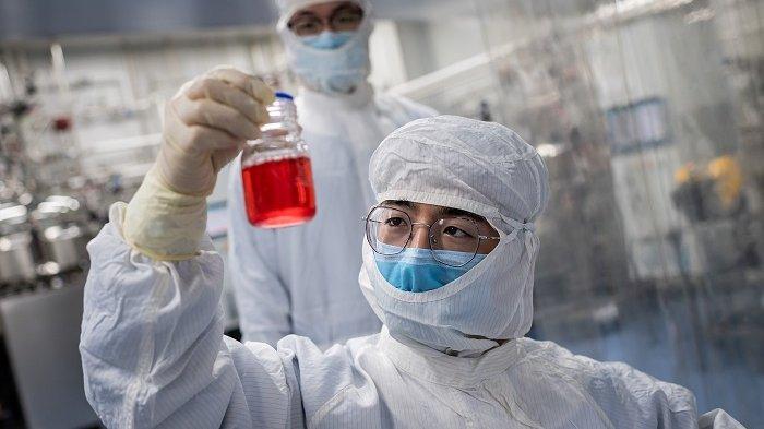 Cara Kerja Vaksin Sinovac Lenyapkan Virus Hingga Membuat Antibodi Bebas dari Pandemi Corona