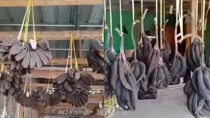 Dampak PPKM Darurat, Dagangan Pisang Pedagang di Karawang Sampai Busuk di Gantungan, Videonya Viral