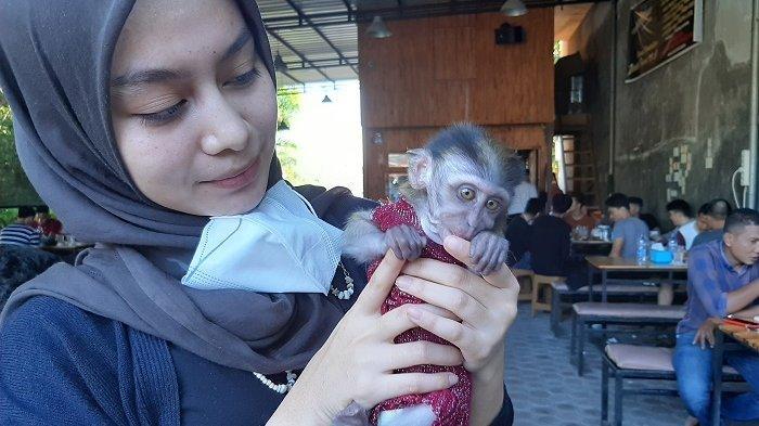 Vina Fitria, calon dokter gigi sedang menggendong monyet peliharaannya.