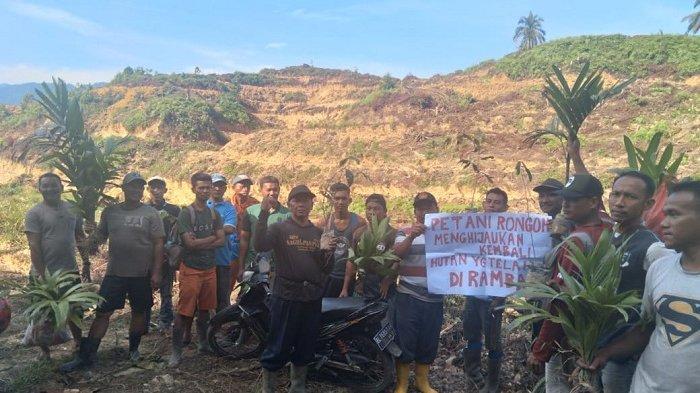 Warga Protes Alih Fungsi Kawasan Hutan di Aceh Tamiang Jadi Perkebunan, Minta Kepastian Status
