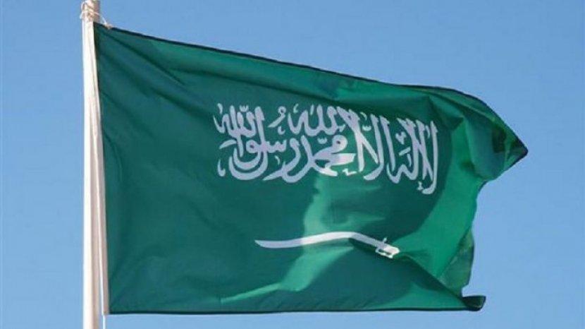 Image result for bendera saudi arabia