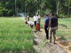 abusyik-blusukan-ke-petani-bawang_20170823_213248.jpg