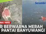 air-berwarna-merah-darah-di-pantai-banyuwangi.jpg