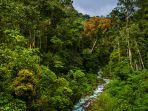 aliran-sungai-di-kedah_20180117_165947.jpg<pf>kupu-kupu-di-stasiun-riset-ketambe_20180117_170749.jpg<pf>sungai-alas-singkil-yang-berhulu-ke-hutan-leuser_20180117_170814.jpg<pf>singah-mata-tongra_20180117_170828.jpg<pf>danau-laut-bangko-di-kabupaten-aceh-selatan_20180117_170850.jpg