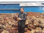 anggota-dprk-nagan-tinjau-pabrik-kelapa-sawit_20170222_183235.jpg